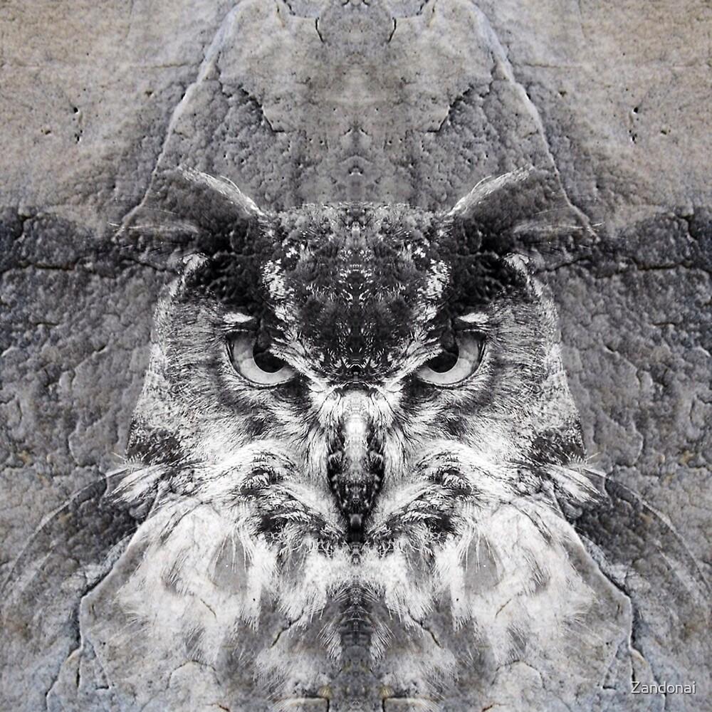 Owl by Zandonai