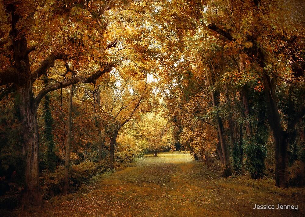 Woodland Canopy by Jessica Jenney