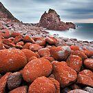Cape Woolamai by Alex Wise