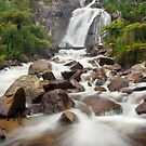 Steavenson Falls by Alex Wise