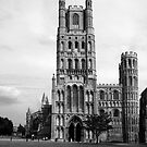 colourful ely cathederal by Ilapin