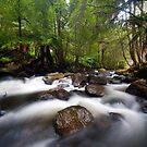 Victorian Stream by Alex Wise