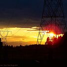 Electrified Evening by rocamiadesign