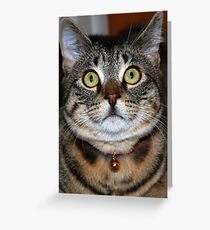 Up Close & Personal With Tasha Greeting Card