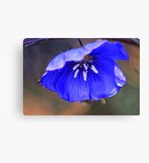 Blue Flax Umbrella Canvas Print