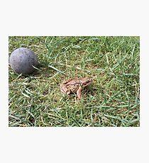 frogball Photographic Print