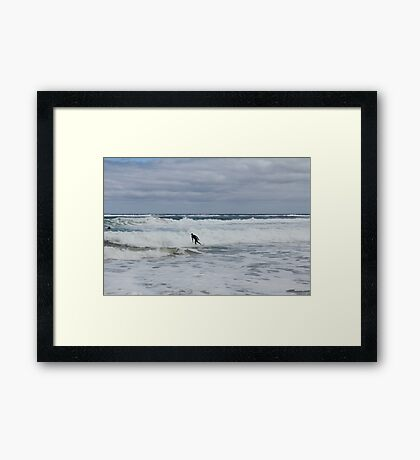 Gone Surfing Framed Print