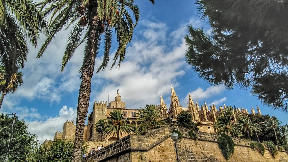 Palma cathederal by grahamdrew