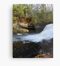 Wadsworth Metal Print