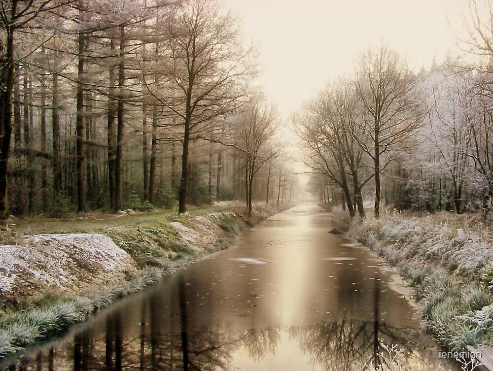 First Winter Signs by ienemien