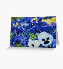 Floral Love Story . (7). by Brown Sugar. Views 189 . favorited by (2) thx! Greeting Card