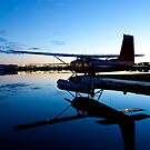 Cessna 180 and Its Reflection by Tim Grams