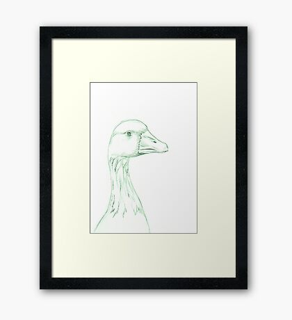 Grey Goose (domestic breed) Framed Print
