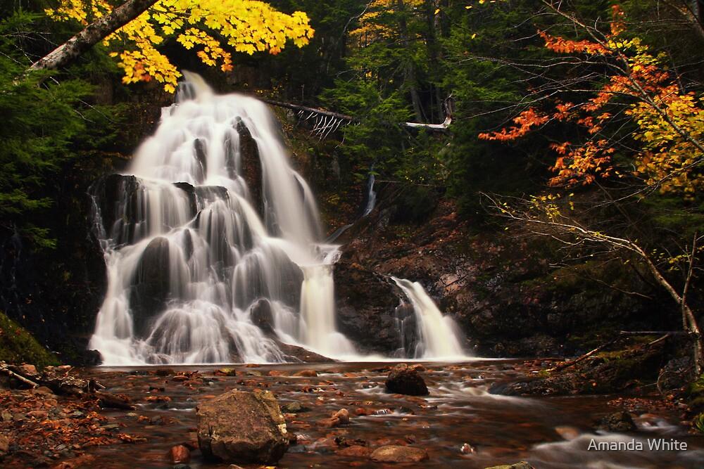 Wentworth Falls by Amanda White