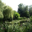 Monet's Lake Garden by medley