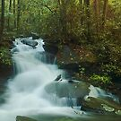 smoky mountain waterfall panoramic by dc witmer
