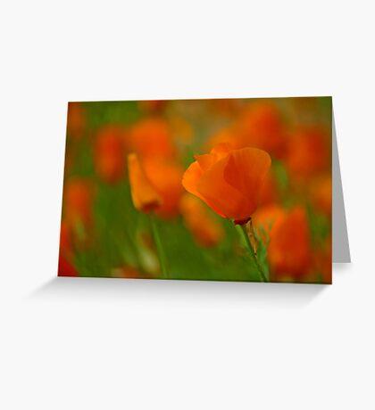 Poppy Art Greeting Card