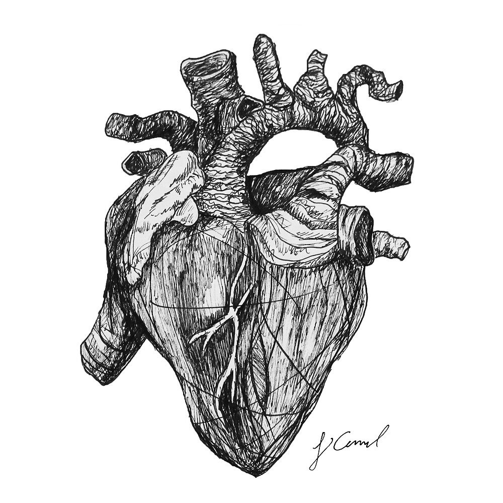 Anatomical Heart by jcarmel