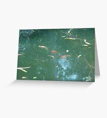 A Fish Parade Greeting Card