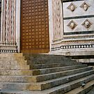 Church Doors, Firenze by Barbara Wyeth