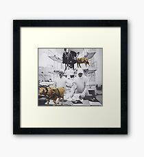 'What the...' Framed Print