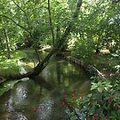 Scenes from Monet's Garden 4 by medley