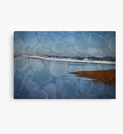 Seashell Seashore Canvas Print