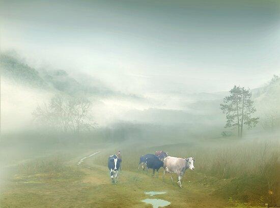Villager by Igor Zenin