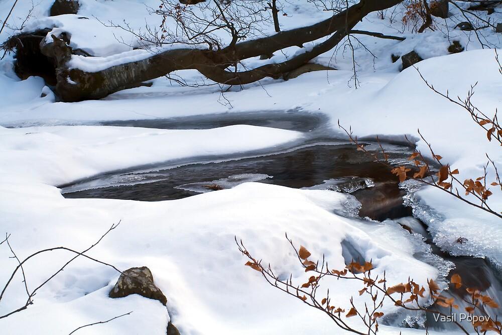 Frozen river by Vasil Popov