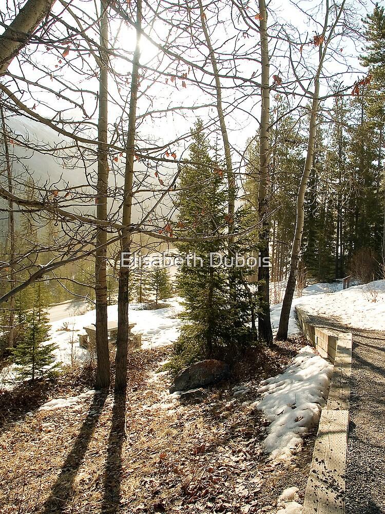 A little bit of Banff series #1 by Elisabeth Dubois