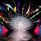 Colour Splash by Don Alexander Lumsden (Echo7)