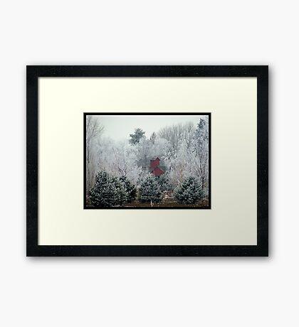 Hidden in the rough Framed Print