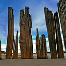 Fort Tilden Driftwood5 by andytechie