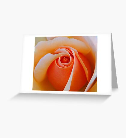 A Rose For My Friends Greeting Card