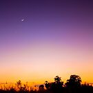 Evening with Violet & Yellow Gradient  by vanyahaheights