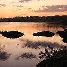 cudgen creek ... by gail woodbury