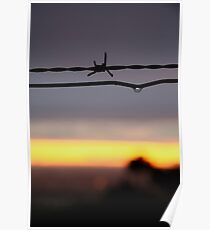 Wire Sunset Poster