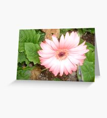 A minaret of pink beauty Greeting Card