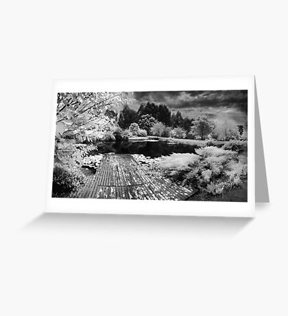 Pontoon Greeting Card