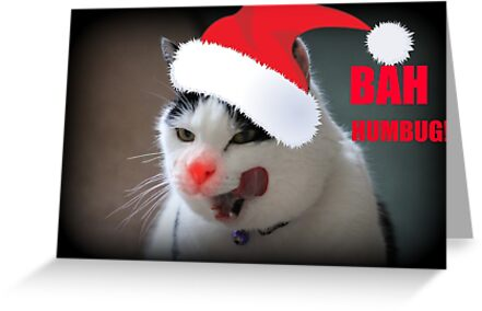 Christmas Bah Humbug! by Ladymoose