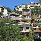 The Gringo Gulch/El Cerro seen from the Isla Cuale, Puerto Vallarta, Mexico by PtoVallartaMex