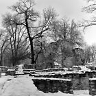 Ruins of the Dominican Convent, Margaret Island, Budapest by Rodney Johnson
