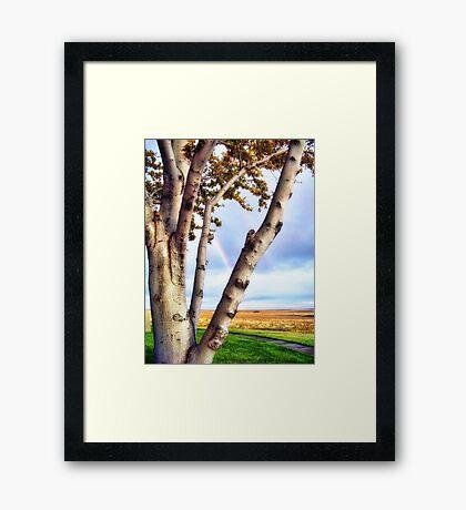 Touch of Eden Framed Print