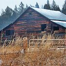 Winter Barn by rocamiadesign