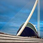 The bridge Assut de l'Or 4 by Slawomir  Piasecki