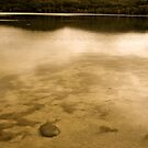 Smith Lake, Great Lakes shire, NSW by Collymack