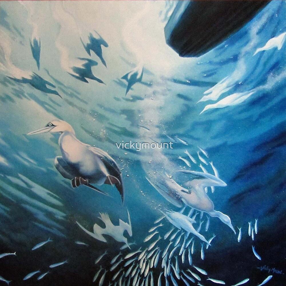 Sardine Run by vickymount