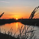 "Sunset in ""my backyard""....... by Adri  Padmos"