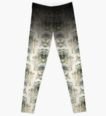 Antique pattern - Spider and Moths Leggings
