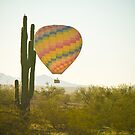 Hot Air Balloon over the Arizona Desert With Giant Saguaro Cactu by Bo Insogna